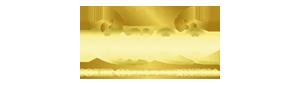 logo ahliqq